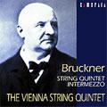 カメラータ・ベスト II :ブルックナー:弦楽五重奏曲 WAB.112/間奏曲 WAB.113:ウィーン弦楽五重奏団