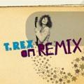 20th Century Boy on Remix