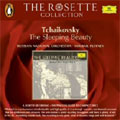TCHAIKOVSKY:THE SLEEPING BEAUTY:MIKHAIL PLETNEV(cond)/RUSSIAN NATIONAL ORCHESTRA