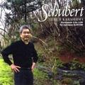 シューベルト: ピアノ・ソナタ Vol.3 - No.20 D.959, 4 Impromptus D.899 Op.90 / 辛島輝治