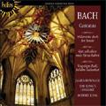 J.S.Bach: Cantatas -Vergnugte Ruh', beliebte Seelenlust BWV.170, Widerstehe doch der Sunde BWV.54, etc (9/1988) / James Bowman(C-T), Robert King(cond), King's Consort