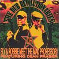 The Dub Revolutionaries - Meet The Mad Professor