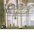 J. S. Bach: Complete Cantatas Vol. 8/ Koopman, Amsterdam Baroque