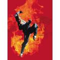少林寺 DVD BOX (初回完全限定生産)