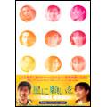 星に願いを DVD-BOX 2(3枚組)