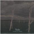 THE BULLET STORM(TYPE B)  [CD+DVD]