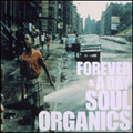 FOREVER&A DAY SOUL ORGANICS SELECTED BY JUNPEI SHIINA