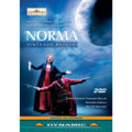 Bellini: Norma/ Carella
