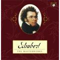 Schubert: The Masterworks -Complete Symphonies, Complete Mass, String Quartets, String Quintets, etc