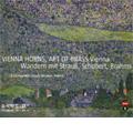 Wandern mit Strauss, Schubert, Brahms -Mahler, Brahms, Schubert, Mendelssohn, J.Strauss, etc (2006) / Vienna Horns, Art of Brass Vienna