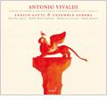 Vivaldi: 12 Trio Sonatas Op.1 / Enrico Gatti(vn/cond), Ensemble Aurora