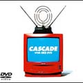 VIVA NICE DVD