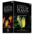 BBC 植物たちの挑戦 DVD-BOX(6枚組)