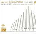 Liszt: Organ Works Vol.5: In Domum Domini Ibimus, Ave Maris Stella, Salve Regina, etc / Martin Haselbock