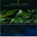 Schubert: Trout Quintet D.667; Mozart: Piano Quartet K.493 (4/3-6/2007) / Izumi Goto(p), Daniel Gaede(vn), etc