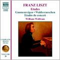 Liszt: Etudes - Gnomenreigen, Waldesrauschen, Etudes de concert