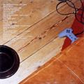 「きみはペット」 オリジナルサウンドトラック[CCCD]
