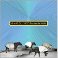 オーロラ [CD+DVD]<初回生産限定盤>