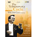 The Tchaikovsky Cycle Vol.3 / Vladimir Fedoseyev, Moscow Radio SO, etc
