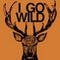 I GO WILD [CD+DVD]<初回生産限定盤>