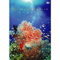 BGV:ときめきマリン・シリーズ Marine Paradise Vol.1~ハワイ編~