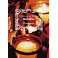 TERRITORY OF DIVINE-20063.27 SHIBUYA-AX<初回生産限定盤>