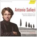 "Salieri : Overtures & Ballet Music -""Armida""Sinfonia in Pantomima, ""Daliso e Delmita"" Overture, etc (1/28-29, 9/28-29, 10/28-29/2007) / Thomas Fey(cond), Mannheim Mozart Orchestra"