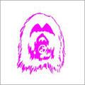 Dragon Balls/soft core dub remix(アナログ限定盤)