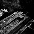grave of mind<通常盤>