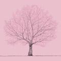 桜 [CD+DVD]<初回限定盤>