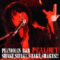 PIANOMAN R & R SHAKE,SHAKE,SHAKE,SHAKES!!