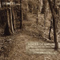 Schnittke: Voices of Nature, etc;  Paert / Roennlund, Kaljuste