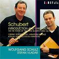 カメラータ・ベスト II :シューベルト:「しぼめる花」の主題による序奏と変奏曲 K.802 OP.160/ツェルニー:序奏、変奏と終曲 OP.80/クーラウ:序奏と変奏 OP.63:ヴォルフガング・シュルツ(fl)/シュテファン・ヴラダー(p)