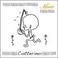 Cotterino