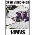 3P3B VIDEO 0408