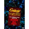 MAX BODY GROOVE-GOLDBRICK LIVE 2005-[VIBP-41][DVD] 製品画像