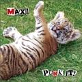 PUNK IT! MAX!<通常盤>