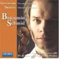Brahms:Double Concerto/Goldmark:Violin Concerto:Benjamin Schmid(vn)/Daniel Raiskin(cond)/Ramon Jaffe(cond)/Witold Lutoslawski Philharmonic in Wroclaw