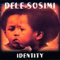 Dele Sosimi/アイデンティティ[AFPCD-35320]