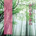 春へのあこがれ -ミーントーンハープとヴァイオリンによる純正律でモーツァルトを:白い予感(K.331)/花の女神(K.216)/ケルト幻影/他:玉木宏樹(vn)/高木真理子(アイリッシュハープ)