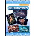 海の不思議な生物たち きれいなサンゴから生きた化石オウム貝まで [EKD-322]