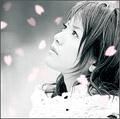 藤田麻衣子/横顔〜わたしの知らない桜〜/今でもあなたが[DLCR-8022]