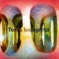 旅団/Terra Incognita[PEM-006]