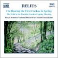 デイヴィッド・ロイド=ジョーンズ/ディーリアス:春初めてのカッコウを聞いて-管弦楽作品集[8557143]