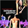 Brazilian Groove Band/アナトミー・オブ・グルーヴ[HEIG-0006]