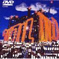 ウルフル DVD