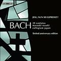 J.S.Bach: Cantatas Box 4 / Masaaki Suzuki, Bach Collegium Japan, etc