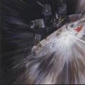 「機動戦士ガンダム~逆襲のシャア」オリジナル・サウンドトラック[328H-5003]