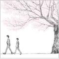 コブクロ/桜<通常盤>[WPCL-10238]