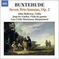 BUXTEHUDE:COMPLETE CHAMBER MUSIC VOL.2:7 SONATAS BUXWV.259-265:JOHN HOLLOWAY(vn)/JAAP TER LINDEN(gamb)/ETC[8557249]
